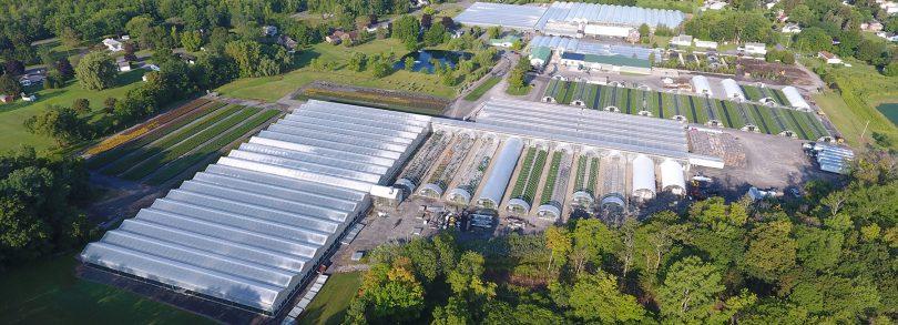 Dickmans Greenhouses Cayuga-county Economic Development Agency
